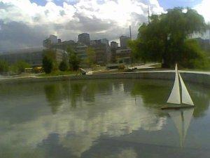 whitesails